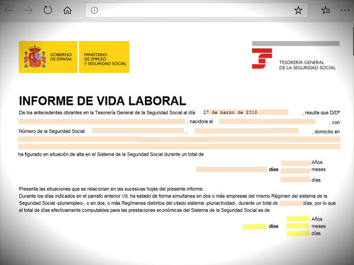 vida laboral documento